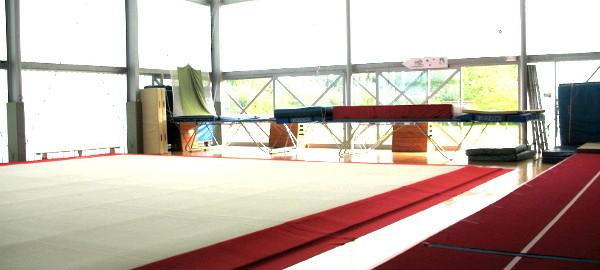 Grote gymhal met verende turnvloer 14m x 14m type Gymnova, trekloungesystemen + looploungesystemen, topwedstrijdtumblingbaan in glasvezel, type Skakuun 35 meter lengte
